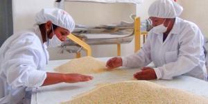 Perú exporta casi US$ 92 millones en quinua