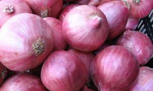 Perú exportó 279 toneladas de cebolla en abril