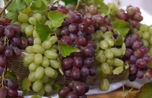 Perú exportó más de 47 millones de cajas de uva de mesa en la campaña 2018/2019