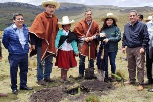 Perú iniciará intensa campaña de reforestación