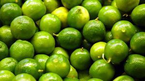Piura exporta más de 6 mil toneladas de limón en lo que va del año