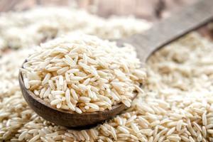 ¿Por qué Camposur proyecta importar 24 mil toneladas de arroz?