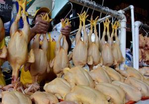 Precio del pollo se mantendrá estable en el segundo semestre del año