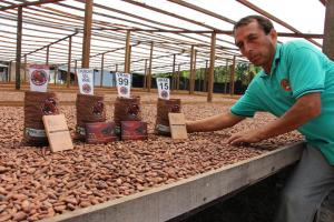 Presentan agenda cafetalera 2020 y plan estratégico del cacao y chocolate en el VRAEM