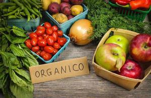 Presentan proyecto de ley para declarar Día Nacional del Consumo de Alimentos Orgánicos
