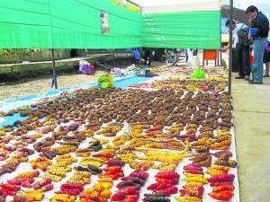 Preservación y valoración de la biodiversidad del país está orientada a recuperar un estilo de alimentación saludable