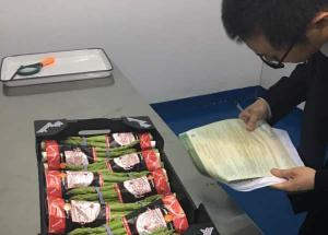 PRIMER EMBARQUE DE ESPÁRRAGOS FRESCOS PERUANOS A CHINA LLEGÓ AYER