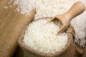 Producción nacional de arroz se reduce en 510 mil toneladas en la campaña grande