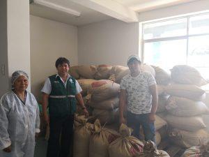 Productor cusqueño exportará por primera vez cacao chuncho a Italia