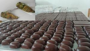 Productores crean chocolate a base de suri y chicharra para combatir la anemia