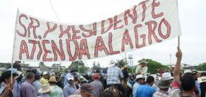 Productores de arroz iniciarán huelga nacional indefinida desde el 26 de julio