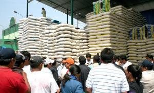 Productores peruanos podrán exportar arroz a Colombia exonerados del pago de impuestos