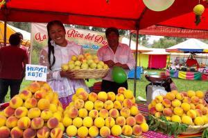 Promoverán cultivo y comercialización de durazno, pera y otros en Cusco