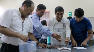 Promueven la obtención de la certificación de competencias técnico productivas en cacao