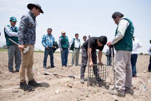 Proyecto Perú Smart Agro 4.0 mejorará productividad de algodoneros del país