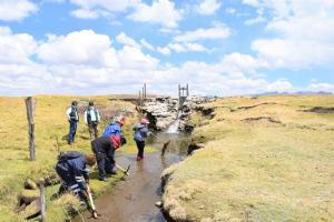 Proyecto Pichis Palcazú realiza mantenimiento de 22.240 metros de canales y drenes
