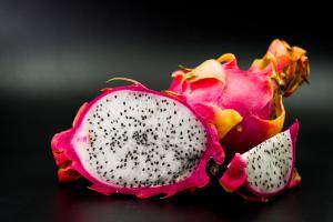 Proyectos de diversificación buscan producir pitahaya en Piura y Lambayeque