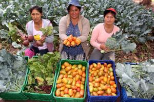 Qali Warma promueve la compra de alimentos frescos de la agricultura familiar