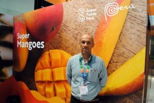 Restricción de la U.E. es una oportunidad para afianzarnos como proveedor de mango fresco, sano y libre de mosca de la fruta en ese mercado