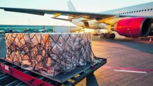 Restricción de vuelos cargueros en el aeropuerto Jorge Chávez puede afectar envíos de espárragos y mangos