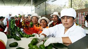 Ruta Productiva Exportadora globalizará mipymes peruanas