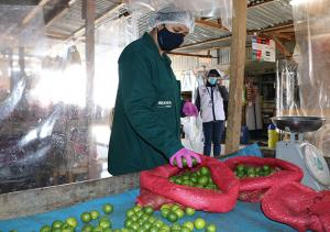 San Martín: intensifican monitoreo de alimentos agropecuarios para determinar su condición sanitaria
