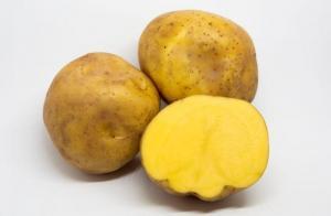 Se registra un gran incremento en la exportación peruana de papa amarilla congelada