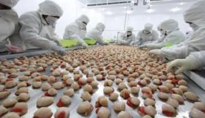 Sector acuícola conquistará nuevos mercados externos