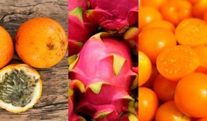 Seis nuevos productos ganarían protagonismo en la canasta agroexportadora en siguientes años