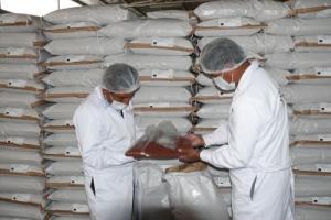 Senasa certifica nuevo cargamento de quinua ayacuchana para Europa
