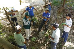Senasa extiende la sanidad agraria a zonas poco accesibles