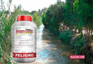 Senasa prohíbe comercialización, distribución y envasado de plaguicidas con el activo Metamidofos