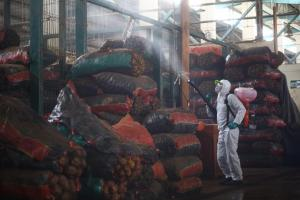 Senasa refuerza jornadas de desinfección en Gran Mercado Mayorista de Santa Anita