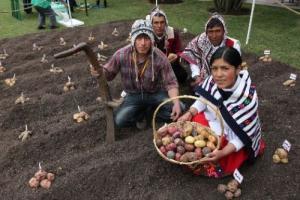 Sepa por qué la FAO destaca aporte de Perú al Patrimonio Agrícola Mundial