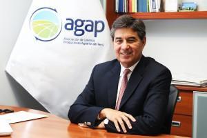 """""""Si se destraban los proyectos de irrigación, inversión en el sector ascendería a US$ 3.300 millones al 2023"""""""