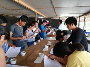 Sierra y Selva Exportadora capacitará a pequeños cafetaleros en temas de catación y barismo