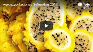 Sierra y Selva Exportadora incursiona en la  agricultura de precisión