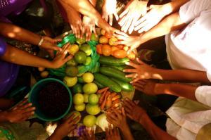 Un Comando para la Seguridad Alimentaria