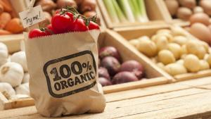 Unión Europea apoya cosecha de alimentos orgánicos