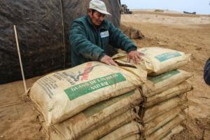 Uso de guano de las islas adulterado afecta a cultivos y fertilidad de suelos