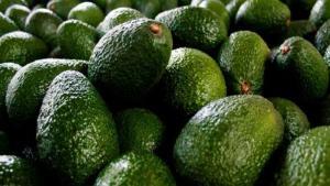Uva, palta, arándano y espárrago representaron el 69% del total de las agroexportaciones peruanas en 2019