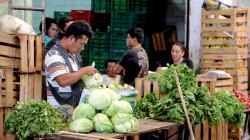 10 claves para el futuro de la alimentación en América Latina