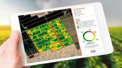 12 mil hectáreas del norte y sur del Perú fueron monitoreadas con Mapeo Verde Satelital