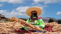19 mil mujeres acceden a Planes de Negocio de Agroideas