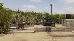 Activarán 30 pozos subterráneos para contrarrestar déficit hídrico en Piura