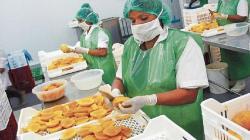 AGAP pide al presidente electo que priorice la agricultura como sector estratégico