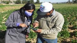 Agricultores de Junín logran mejores precios para sus productos con apoyo del Midagri