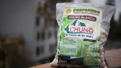 Agricultores industrializan su producción de papa convirtiéndola en chuño