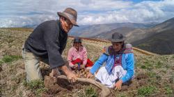 Agricultores y ganaderos de Moquegua podrán acceder a créditos preferenciales con Agro Quellaveco