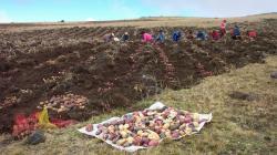 Agricultura Climáticamente Inteligente y Pequeños Productores